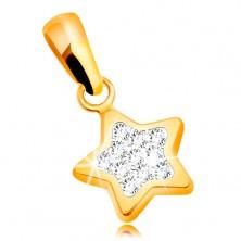 Anhänger aus 585 Gelbgold - glitzernder Fünfstern, klare Zirkonia
